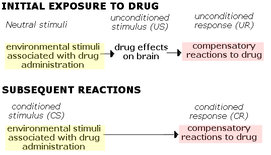 classical conditioning and drug abuse